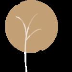 Logo Dubois Immobilier slider